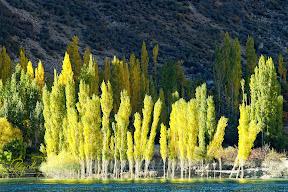 Lake Attabad, Gojal, Upper Hunza Valley,