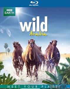 Thiên Nhiên Hoang Dã Ả Rập - Phần 1 - Wild Arabia Season 1 poster