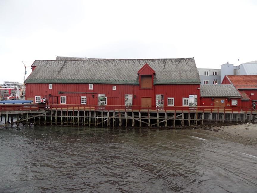 Norvège mars 2014 SAM_1554