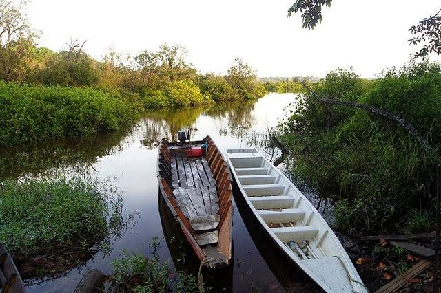 Taman-Negara-Loagan-Bunut-National-Park