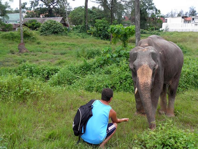 https://lh6.googleusercontent.com/--N063zRbkbQ/Up0XjcnFGYI/AAAAAAAAEzM/DleGn6K-OjQ/w677-h508-no/Tajlandia+2013+953.JPG