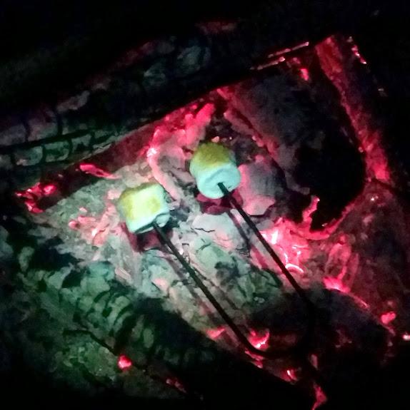 Roasting marshmallows over coals