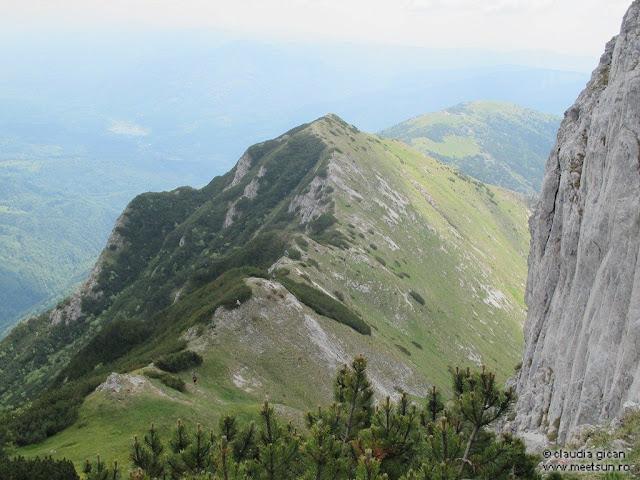 Retezat Trail Race - Culmea Plesa-Piule