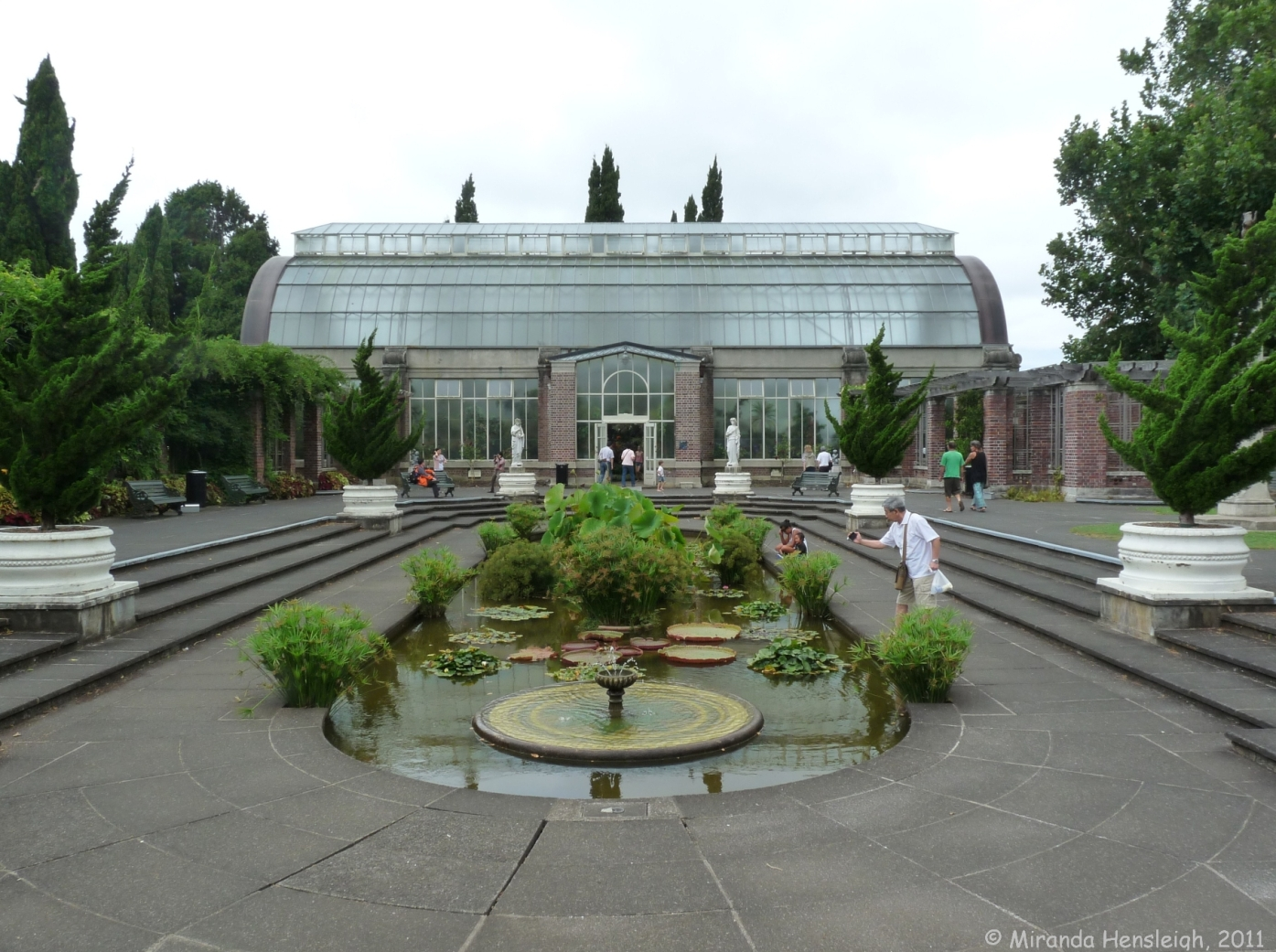 victoria amazonica winter garden auckland domain gorgeous with
