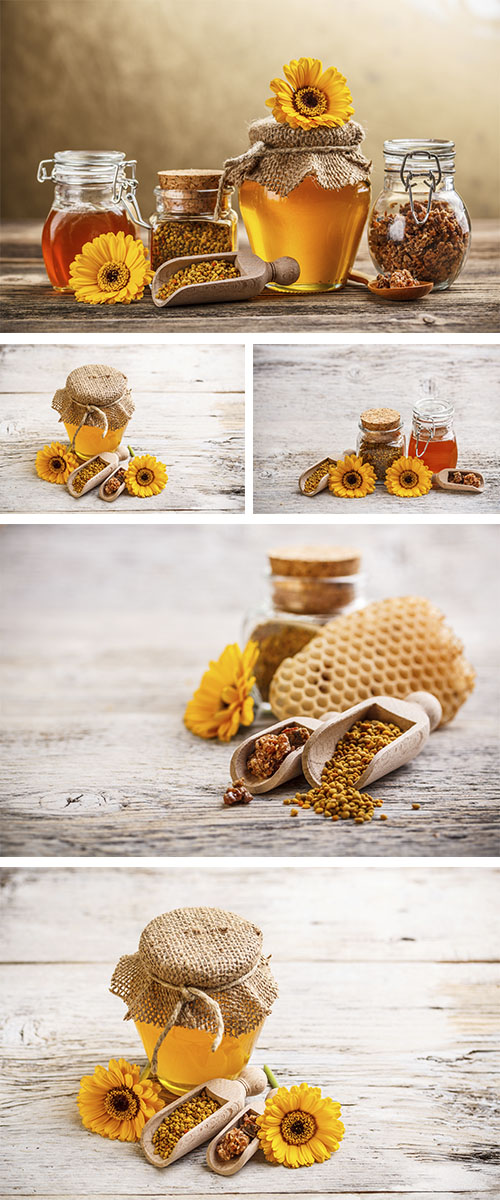 Stock Photo: Flower honey, pollen and propolis