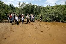 Un grupo de personas realiza un recorrido.