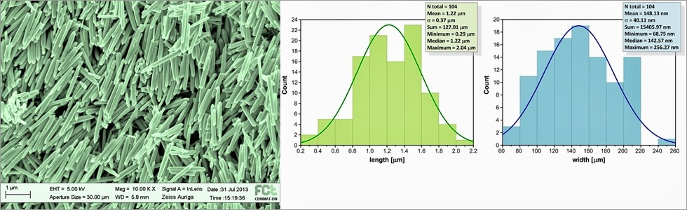 How to measure nanoparticle size distribution using SEM picture