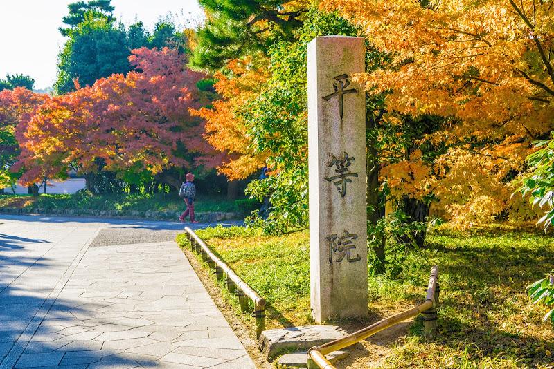京都 紅葉 平等院 写真1