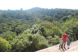 Nous dominons la jungle, c'est magnifique!!!