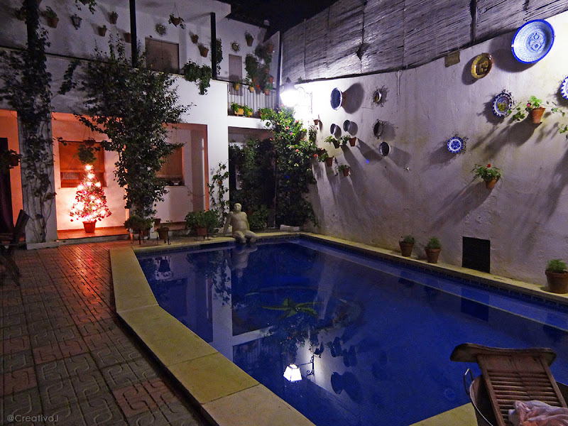 piscina, árbol navidad, estatua, noche, macetas, platos decorativos, cerámica, flores, plantas, iluminación navideña, luces de navidad, enredadera, planta trepadora, patio, navidad