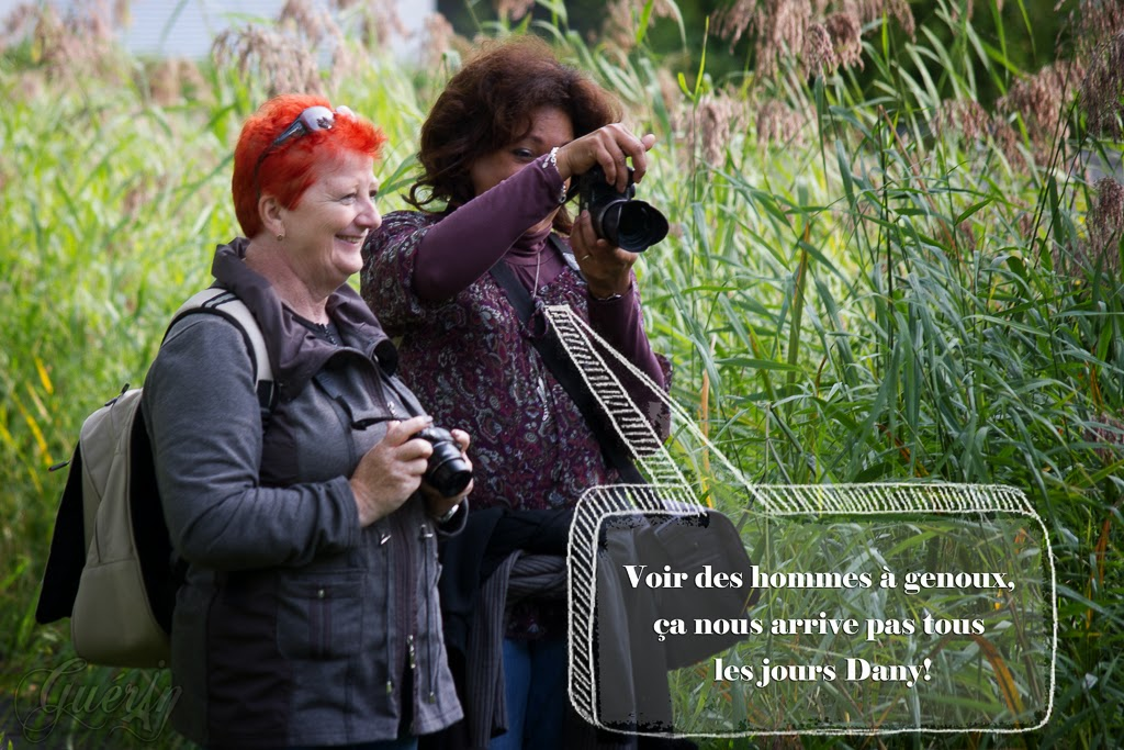 Lumixday 2013 NANCY - les photos - Page 2 IMGP3610-Modifier