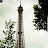 maddi nikhil avatar image