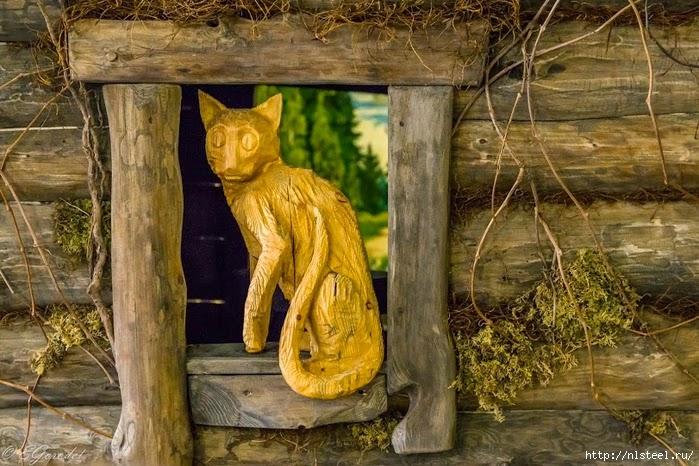 котяра в окне