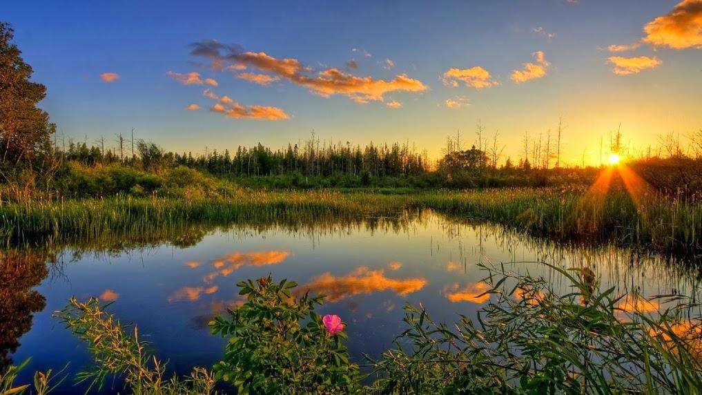 Природа.Пейзаж.Река