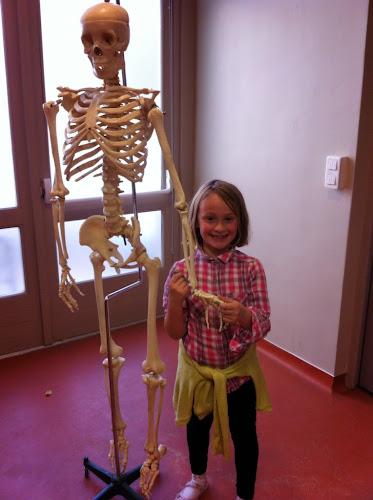 Oscar squelette de Lille