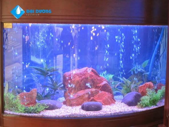 hồ cá cây giả