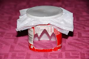 Bricolage et accessoires divers pour Flash (intégré ou cobra) Mini-Pringles-070