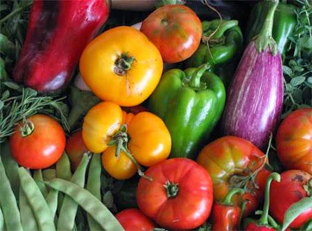¿Por qué consumir comida orgánica?
