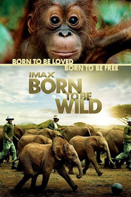 Born to Be Wild (2011) BluRay 720p HD Watch Online, Download Full Movie For Free