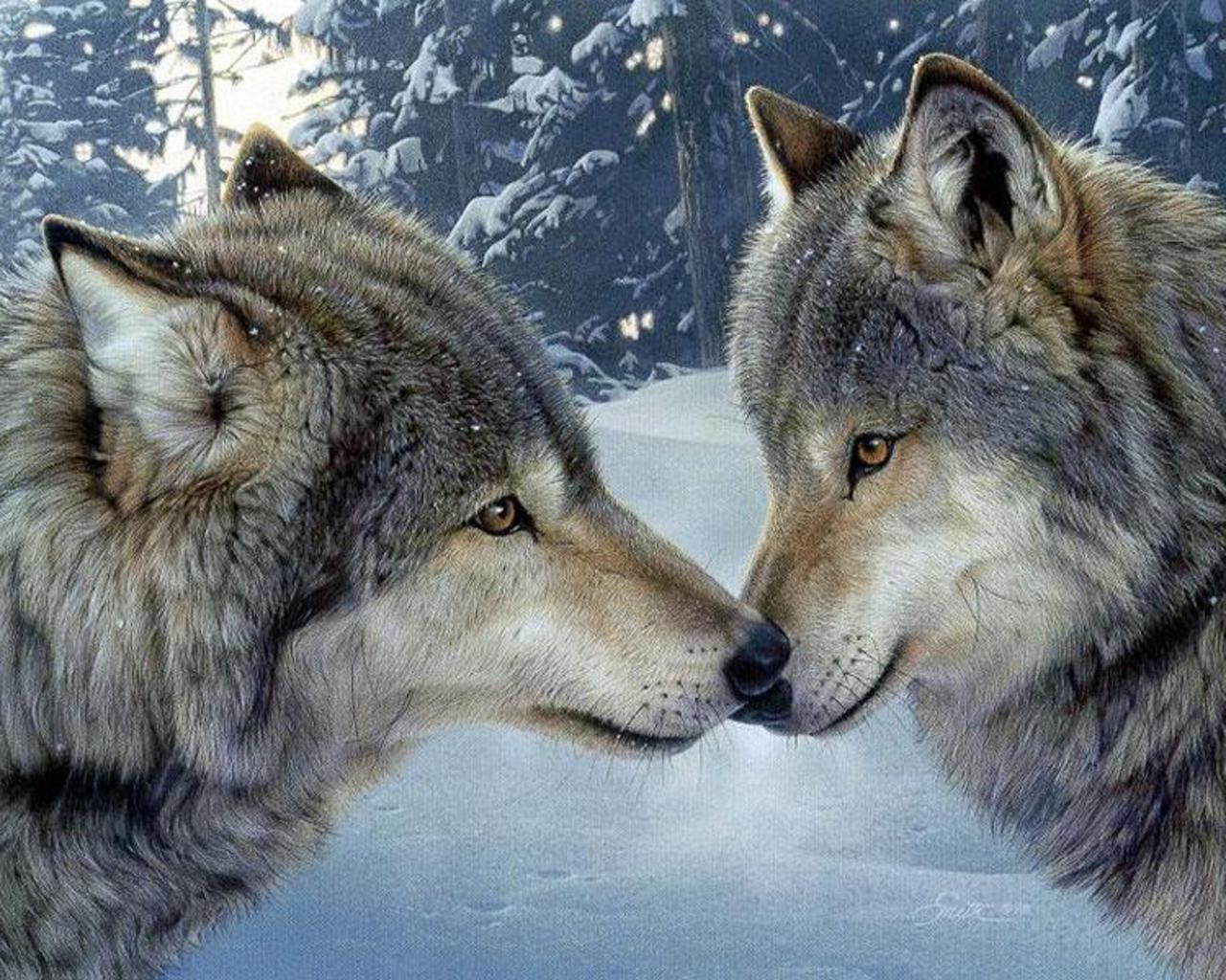 Free Always 4 You 20 Amazing Animal Kisses