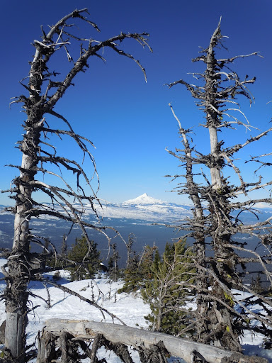 Mt Jefferson from Black Butte