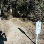 NPWS walking sign on Waterfall Walk (296945)