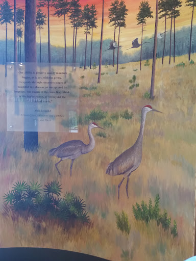 Wildlife Refuge «Mississippi Sandhill Crane National Wildlife Refuge», reviews and photos, 7200 Crane Ln, Gautier, MS 39553, USA