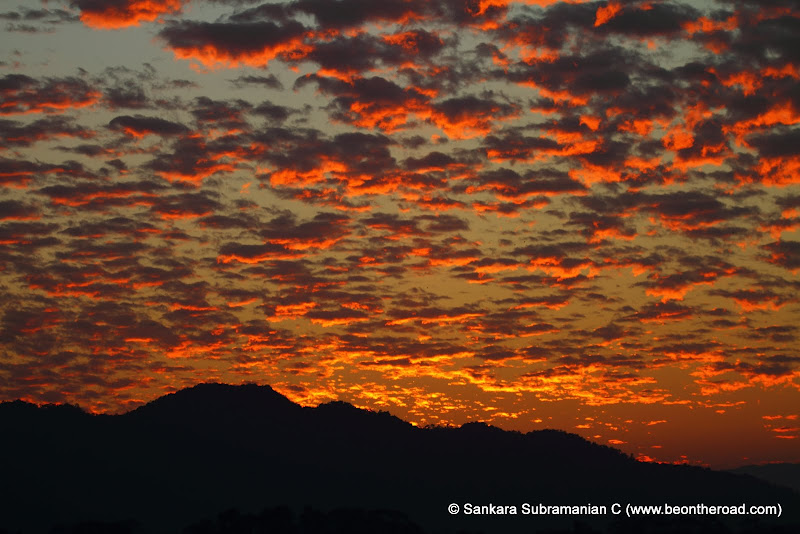Vivid and Vibrant Evening Sky at Kaziranga - 10