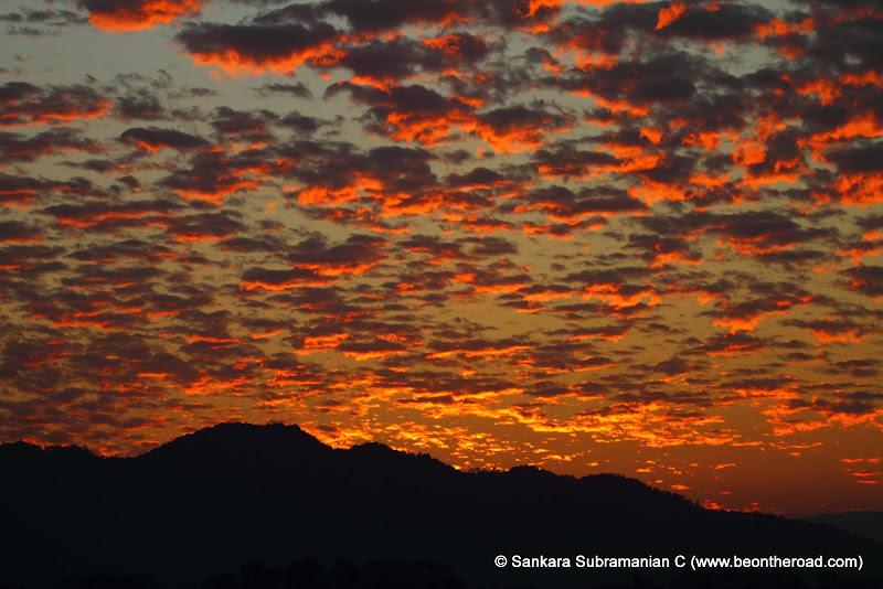 Vivid and Vibrant Evening Sky at Kaziranga - 10