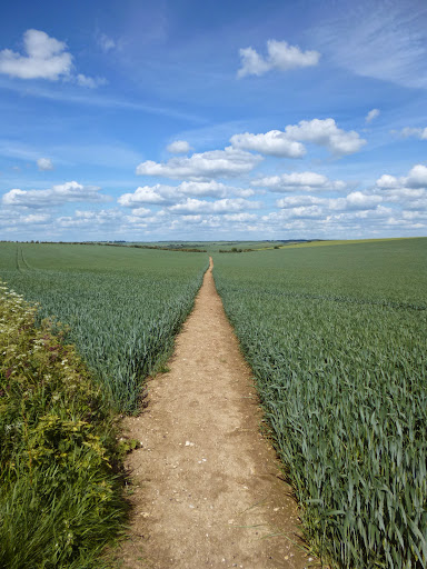 Towards Great Chesterford