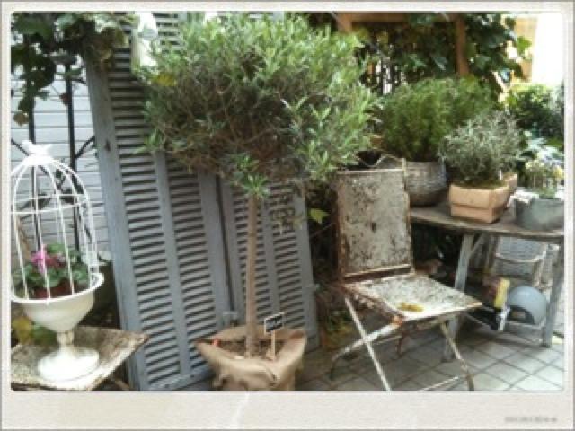 Madrid rouge urban for Brulots de jardin