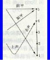 汉语的声调及连读变调简介