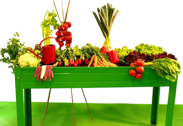 comprar mesa de cultivo huerto en casa