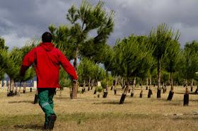 Red Natura 2000 en la Comunidad de Madrid