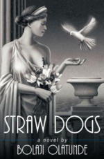 Straw Dogs by Bolaji Olatunde (Book Excerpt)