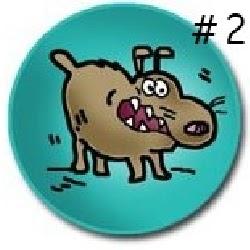 Rabid Horse Minnesota Worms Amp Germs Blog - 250×250