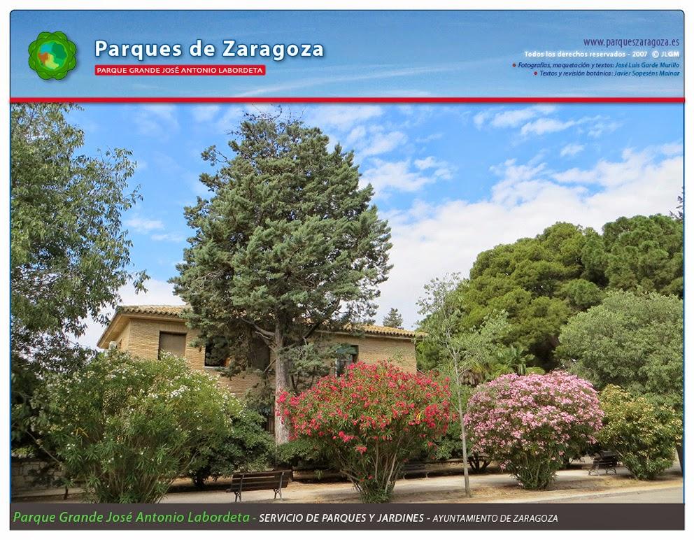 Servicio de Parque y Jardines del Ayuntamiento de Zaragoza.
