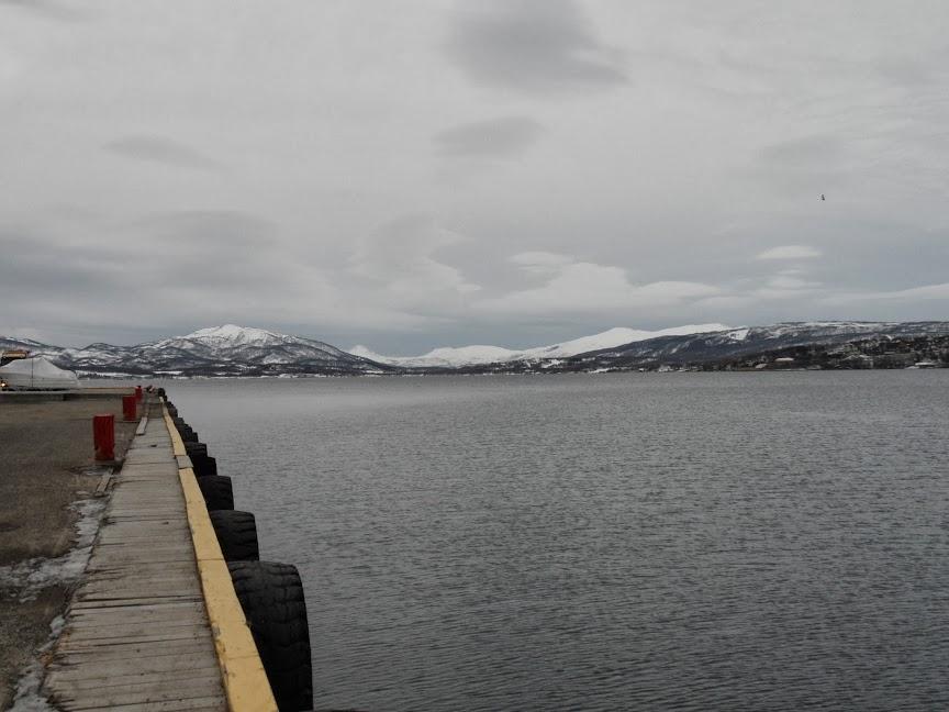 Norvège mars 2014 SAM_1432