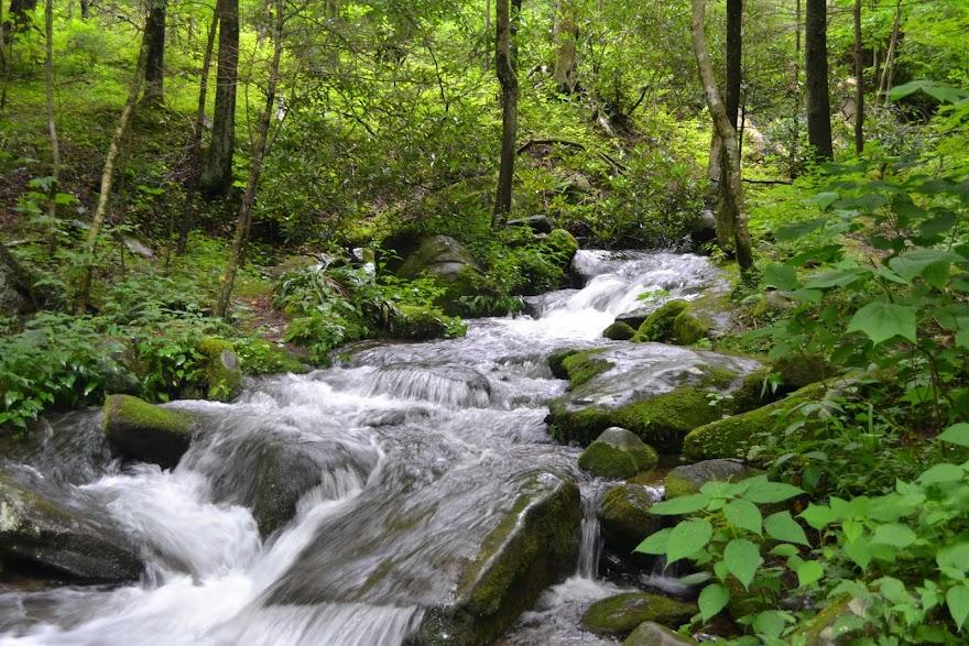 Национальный Парк Грейт-Смоки-Маунтинс, Теннесси (Smoky Mountains, Tennessee)
