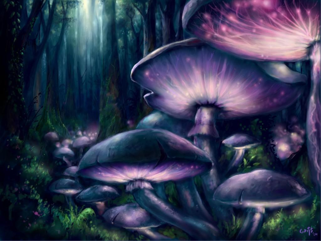O ozônio trata um fungo de prego