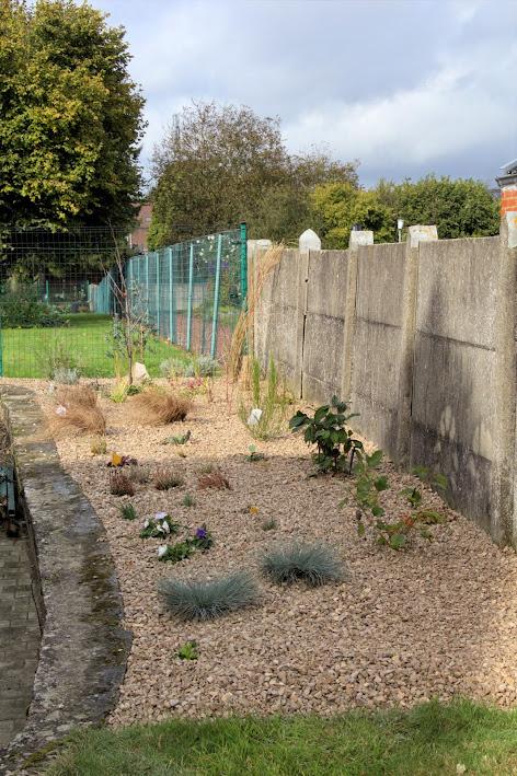 Nouvelle maison dit aussi nouveau jardin... IMG_0155