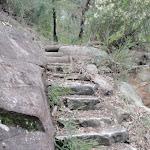 Steps (144702)