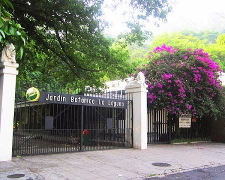Jardín botánico La Laguna
