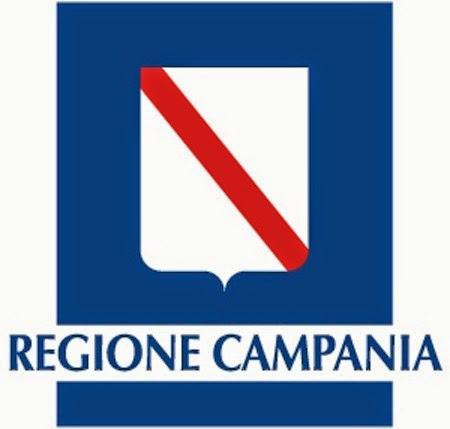 Programma unico regionale per la diffusione dei defibrillatori semiautomatici esterni
