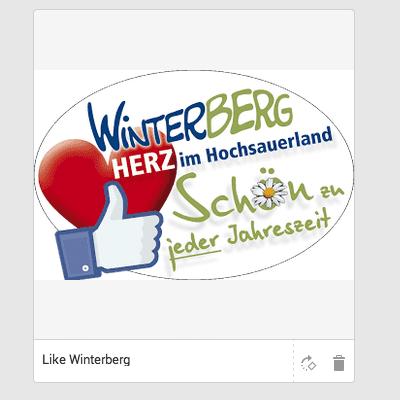 Like Winterbegr
