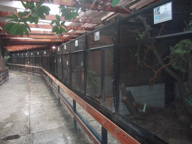 Wnętrze pawilonu małych ssaków