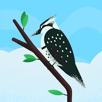 Profile photo of Dương Lượng