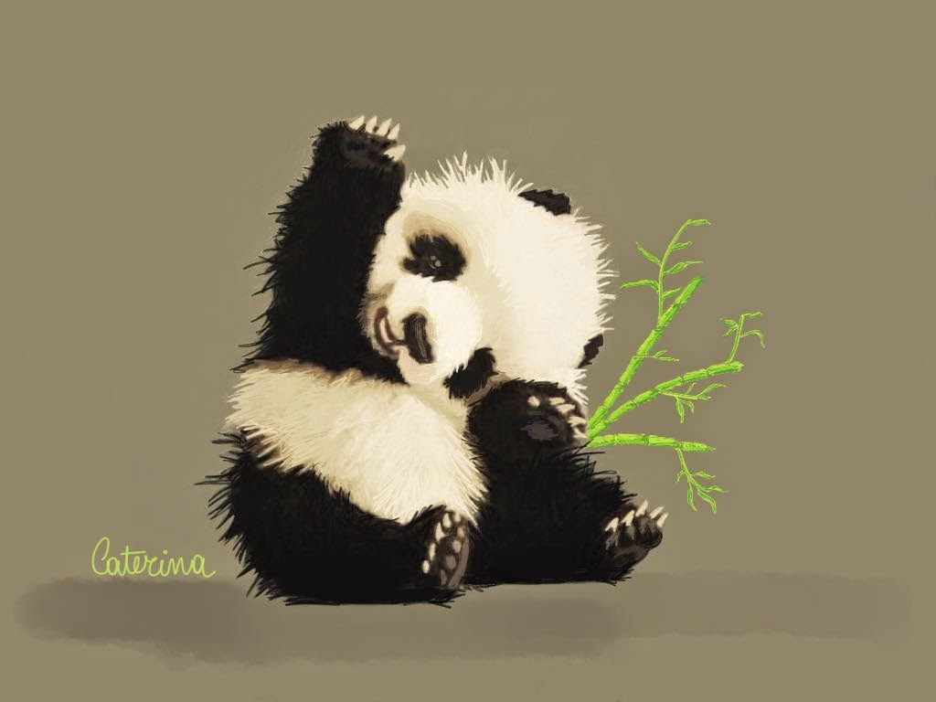 Panda  made with Sketches