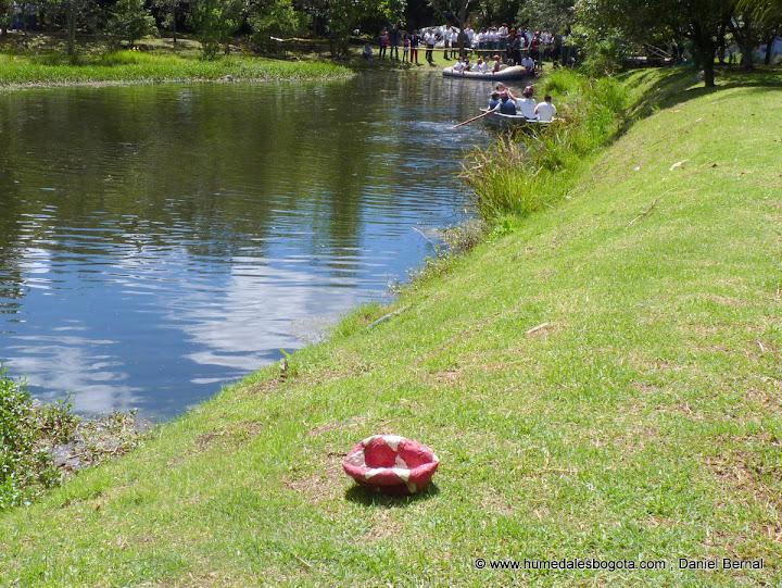 Balón en medio del humedal humedalesbogota.com