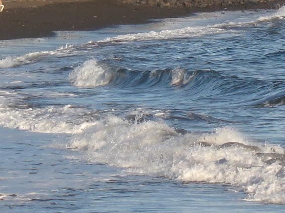 playa lanzaroteña